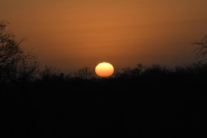 Kruger National Park, SouthAfrica